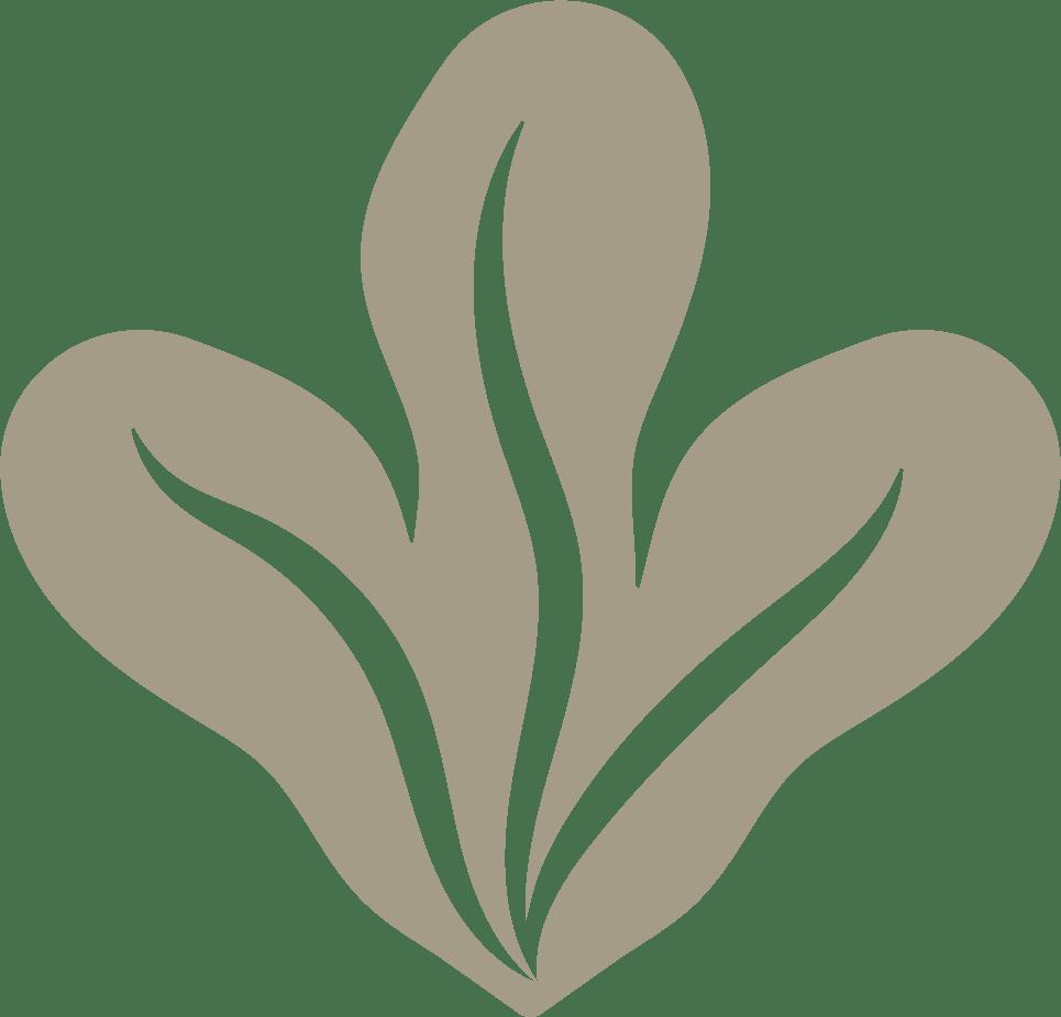 Fächer grün