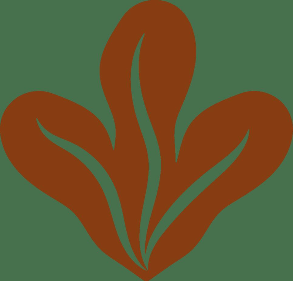 Pflanze organe