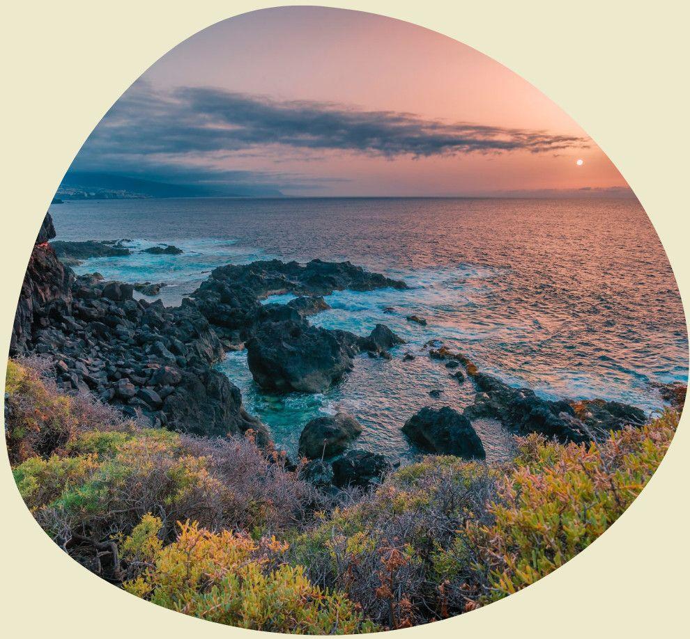 Teneriffas Küste